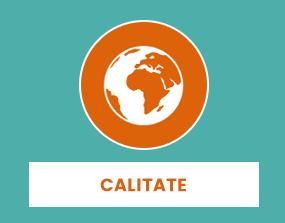 calitate_icon