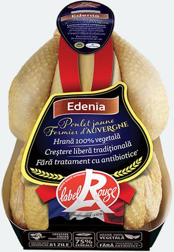 poulet-jaune-fermier-dauvergne